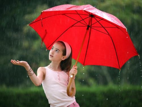 Надежная защита от дождя: государственная стандартизация зонтов