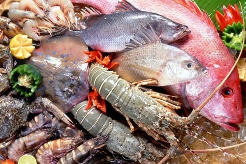 В сентябре текущего года коллегией ЕЭК может быть принят проект технического регламента на рыбную продукцию